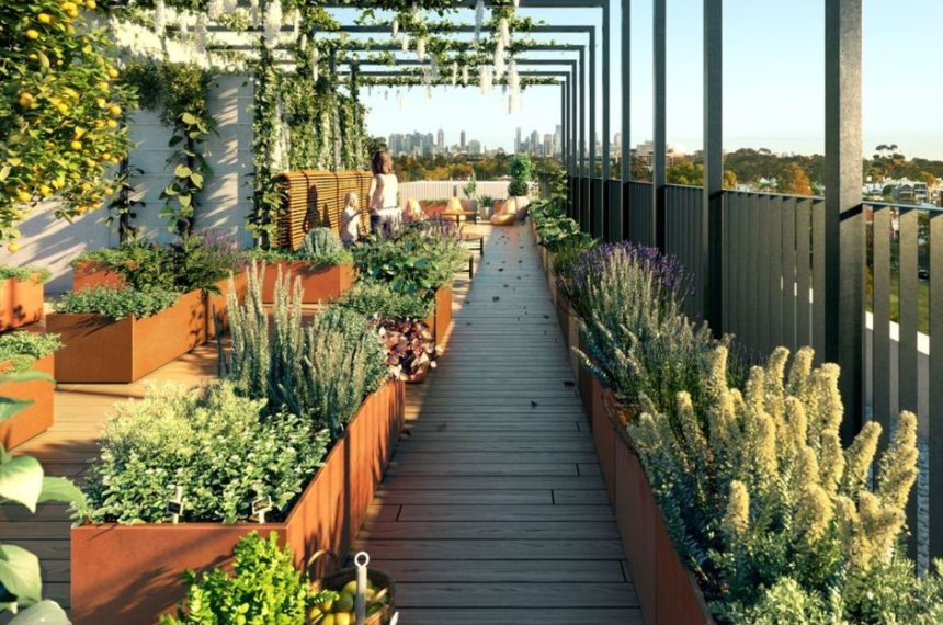 THE LIGHT CHOICE FOR ROOFTOP GARDENS